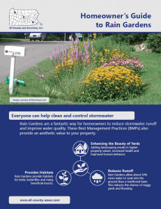 Homeowner's Guide to Rain Gardens